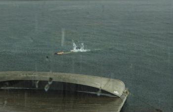 rain-swim-2